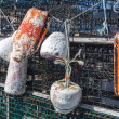 Stock Photo: Lobster Traps and Buoys