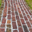 Antique Brick Walkway — Stock Photo