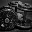 Old Dumbbells — Stock Photo