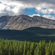 Alberta Wilderness — Stock Photo #30510671