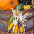 Fall Display — Stock Photo #30605087