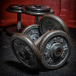 Foto Stock: Dumbbells