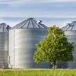 Stock Photo: Grain Tanks