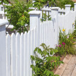 White Picket Fence — Stock Photo #31810595