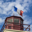 Acadian Flag — Stock Photo