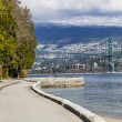 Lions Gate Bridge — Foto Stock