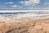 пляж зимой — Стоковое фото