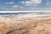 Plaża zimą — Zdjęcie stockowe