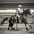 Western Horse Pole Bender in Sepia — Stock Photo