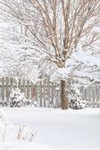 ворота зимнего сада — Стоковое фото