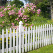 White Picket Fence — Stock Photo #36833525