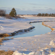Prince Edward Island Winter Stream — Stock Photo