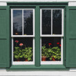 Green Gables Window — Stock Photo #37133281