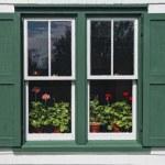 Green Gables Window — Stock Photo #37133281