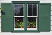 Green Gables Window — Stock Photo