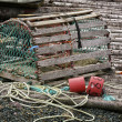 Stock Photo: Newfoundland Lobster Trap