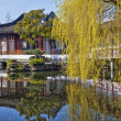 Chinese Garden — Stock Photo #38405607