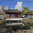 Chinese Garden — Stock Photo #38586211