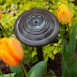 Garden Solar Light — Stock Photo