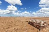 Prince Edward Island Beach — Stok fotoğraf