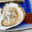 Malpaque Oyster — Stock Photo