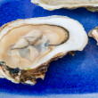 Stock Photo: Malpaque Oyster