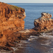 Постер, плакат: Prince Edward Island Cliffs