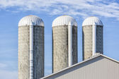 Forage Silos — Stock Photo