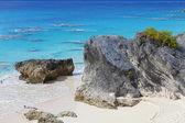 百慕大的海岸线 — 图库照片