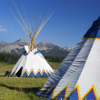 Tepee — Stock Photo #47074907