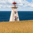 Cape Tryon Lighthouse — Stock Photo #48962999