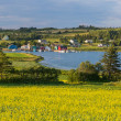 ������, ������: PEI Fishing Village