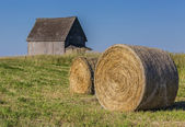 Rural Hay Bales — Stock Photo