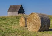 Rural Hay Bales — Stock Photo