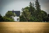 農場の家 — ストック写真