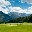Stock Photo: Cycling in Planica Valley