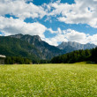 Planica Valley — Stock Photo