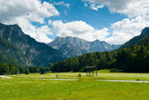 Cycling in Planica Valley — 图库照片