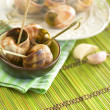 Escargots - Stock Photo