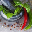 Stock Photo: Basil in mortar
