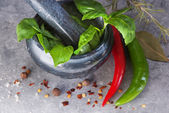 Basil in mortar — Stock Photo