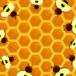 Beehive Frame — Stock Photo