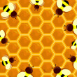 Stock Photo: Beehive Frame