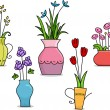 Flower Vases — Stock Photo