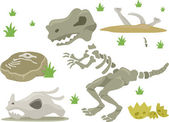 Dinosaur Bones — Stock Photo