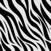 Zebra Animal Print Background — 图库照片