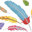 Stock Photo: Colorful Feathers