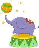Éléphant du Cirque d'équilibrage d'une boule de cirque — Photo