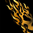Stock Photo: Flame Designs