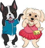 Dog Fashion Show — Stock Photo